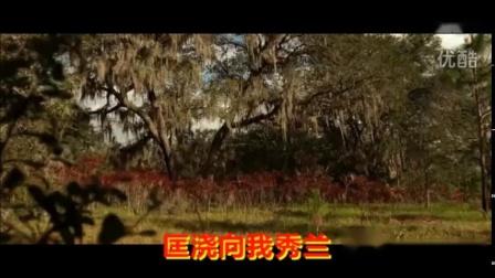 11.全民K歌有婺剧伴奏唱段  多情寡妇