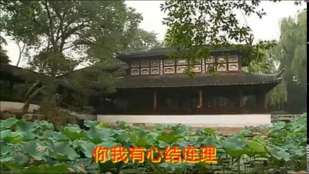 14.全民K歌有婺剧伴奏唱段  二度梅选段