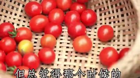 时过境迁,儿时的味道你还记得几样?有小时候tou吃过邻居家水果小吃吗?小番茄是不是特别的香!