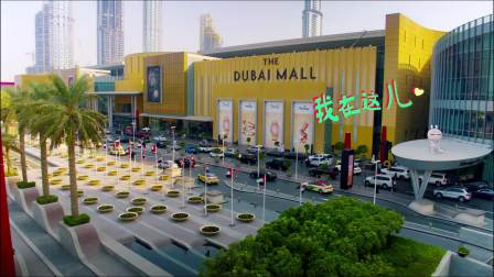 """兔斯基""""迷失""""迪拜市中心"""