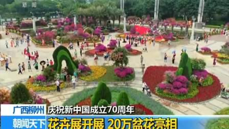 庆祝新中国成立70周年 广西柳州 花卉展开展 20万盆花亮相