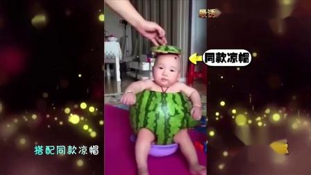主人家中买了个西瓜垫子,结果二哈当成了真的西瓜,主人都笑喷了