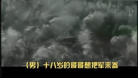 宋祖英/吕继宏 翻唱 电影《柳堡的故事》片尾曲《九九艳阳天》