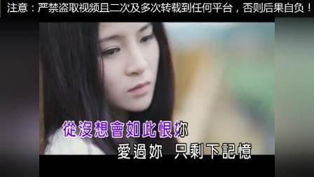 尚芸菲歌曲ktv字幕版本合集