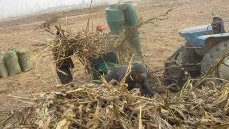 价格最低,大型50玉米秸秆粉碎机,鑫绿金自动进料稻草花生秧玉米芯豆秧草粉机厂家