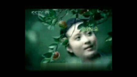 【中国大陆广告】2007年 CCTV1 金浩茶油广告