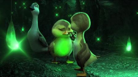 《妈妈咪鸭》大雁给鸭子当爹又当妈 动漫界的喜当爹实在太搞笑