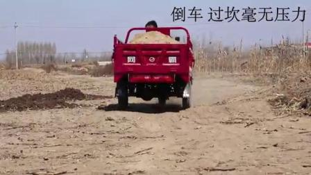 农用小霸王三轮摩托车装载实测