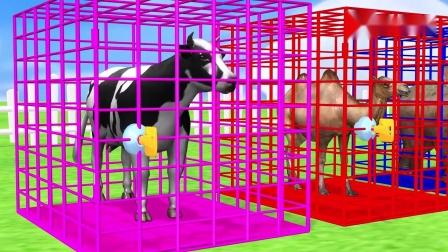 猴子用马来运输水果,给大象和小动物吃苹果变出各种颜色,动画