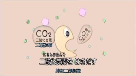 【日本科学技术】压缩饼干(压缩干面包)的制作流程