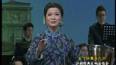 龙飞凤舞春之声-沪剧经典交响演唱会(2012年)