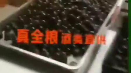 唐三镜真全粮杨俊丽:特色水果酒-葡萄酒发酵中