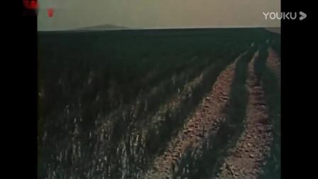 电影《老兵新传》(1959)_高清