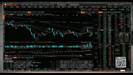 股票期权知识教学 行情使用期权行情、