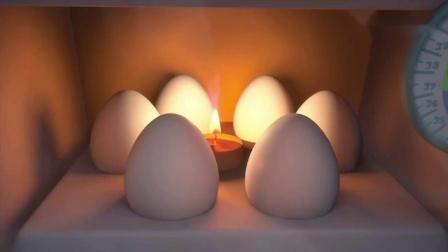 螺丝钉会下蛋的的不只有鸟类,很多动物都能下蛋,快来了解一下