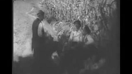 南斯拉夫老电影-《他俩》国语译制片_flv