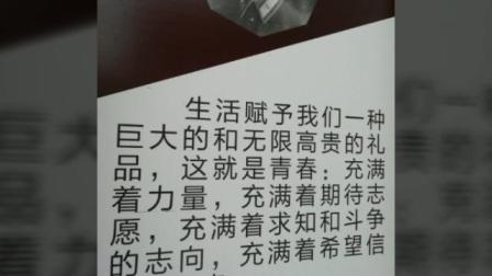 轿曲——郑州古玩城等地掠影