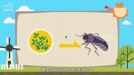 蝉受到惊吓的时候真会撒尿吗