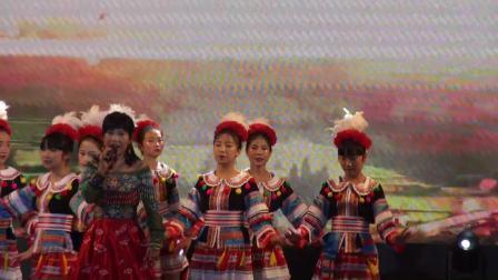 2020年阳山县群众文化艺术晚会
