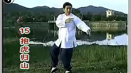 付清泉嫡传杨式太极拳85式教学ABCD㸣