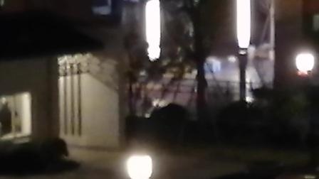 云谷小区半夜有人放烟花