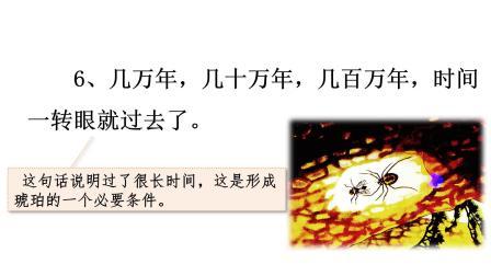 部编语文四年级下册第5课《琥珀》第二课时丰县首羡镇中心小学韩文娟
