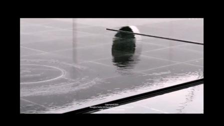(转载于素水设计官网,如有版权请联系发布者删除视频)安仁院坝程控涟漪项目