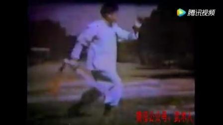 (刀)杨家太极嫡传杨守中传人姚光先生演练的太极散手和杨式太极刀视频,非常珍贵!