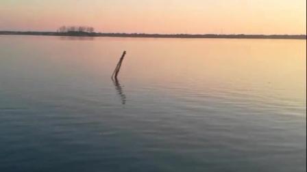 锦溪五保湖,