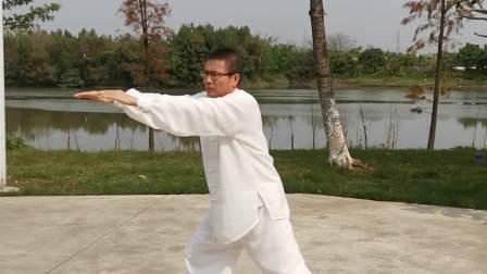 秋生演练杨氏太极拳85式传统套路