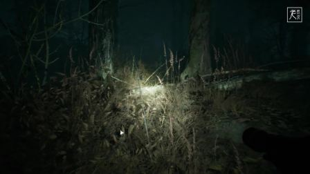 【CG动画】布莱尔女巫~1080P