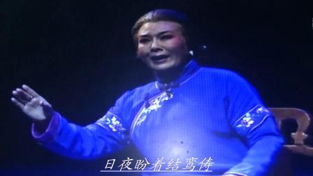 豫剧音配像 董桂林配唱《风雨故园》小蜗牛