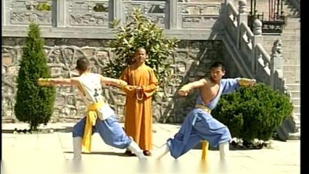 33.少林六合拳《释德扬》《少林传统功夫老架捶谱系列》
