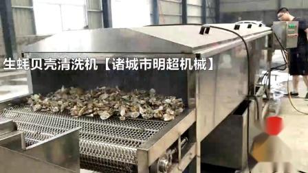 广西清洗牡蛎贝壳皮清洗神器 减少人工 节约用水 生蚝清洗机现货