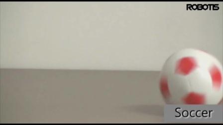 Robotos GP 比赛型智能人型机器人