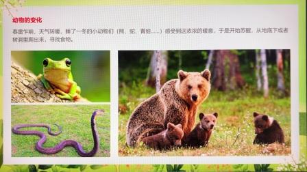 3月5日中文二十四节气·惊蛰