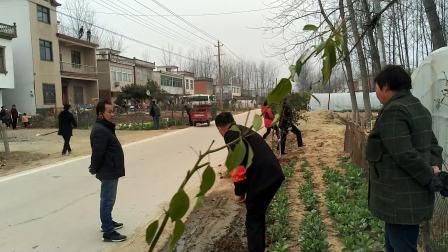 村里的面子工程