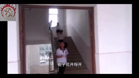 《栀子花开》MV 柳州八中南1708班