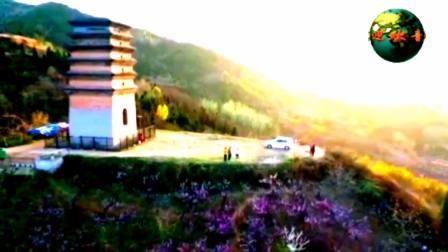 第一集;家乡二龙塔桃花盛开;2020陕西风光系列片(一)