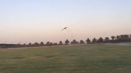 Gaui NX7 迪拜Tareq飞行视频