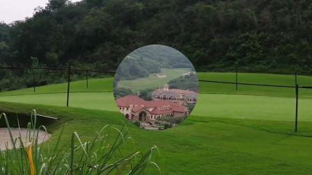 宜昌龙盘湖高尔夫球场风景区  一片绿色的海洋  春意正浓