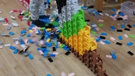五彩金字塔墙 7岁孩子摆多米诺
