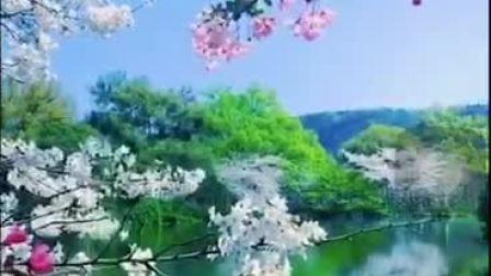 【5D视频 】观看时请遮住一只眼睛,会呈现出非常漂亮的立体画面,太神奇了!                              (张武雷 谷九展上传)