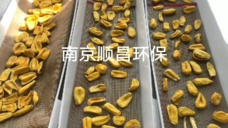 低温真空微波干燥机-菠萝蜜杀菌膨化干燥机