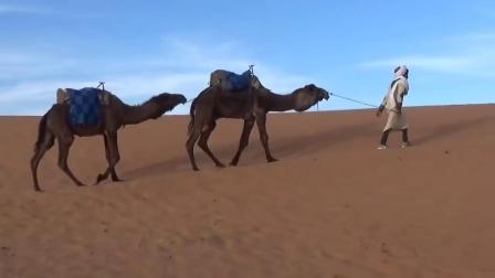 Can you ride MTB in the SAHARA-!  Welcome to Odub's diary cam