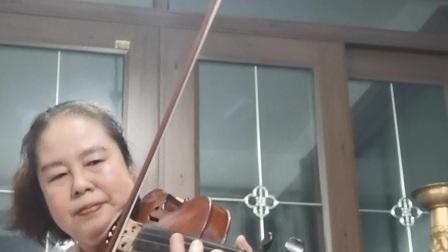 小提琴《每当我走过老师窗前》