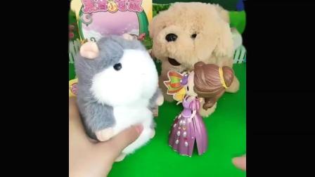 父王给白雪公主和贝尔公主每人买了一个小狗狗,贝尔公主都想要