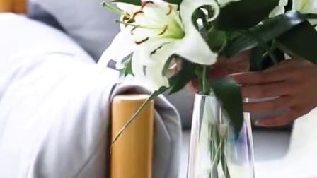 乐梧绿植园艺花瓶以现代都市审美为主题,以现代简约风为主流款式,展现现代简约美的清新感