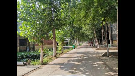 襄城县范湖乡岔河沿村精细化打造