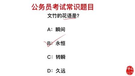 公务员考试题,文竹的花语是什么?是久远吗?